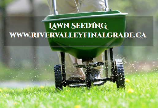 lawn_seeding_for_better_landscape