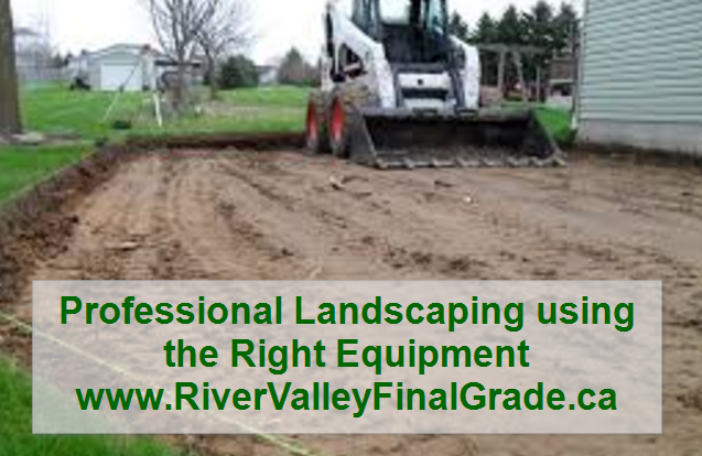 How landscaping company reviews help save money in the for Professional landscaping service