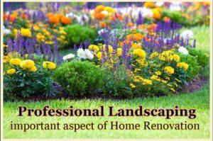 Professional Landscaper in Edmonton Alberta