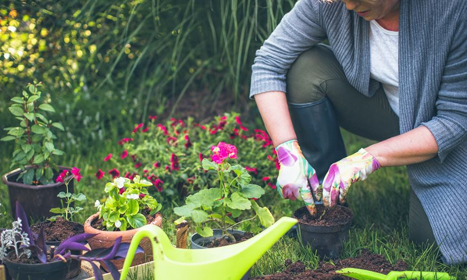 Your Landscaping Leads to Better Health