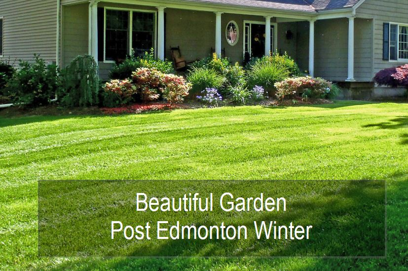 Beautiful Garden In Edmonton, Alberta