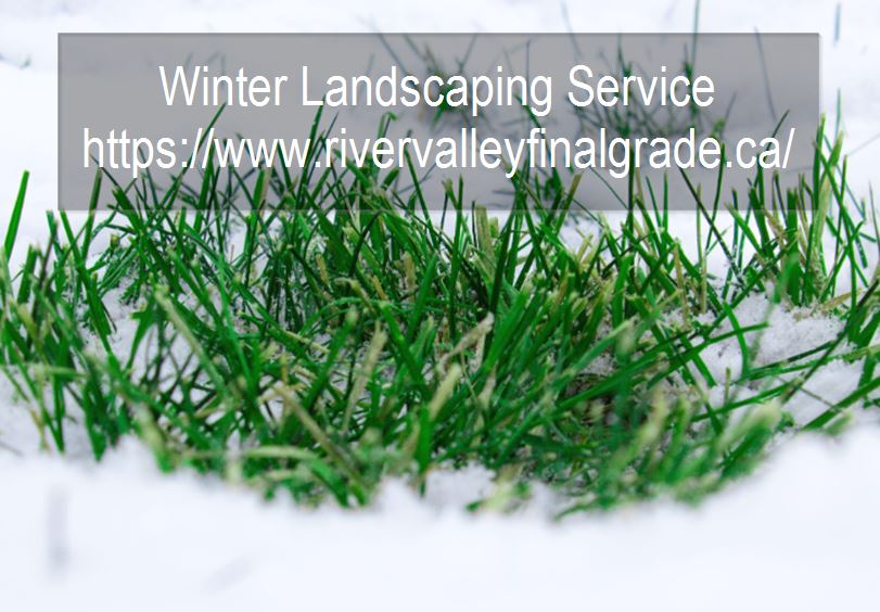 Should you hire a landscaping company in winter?