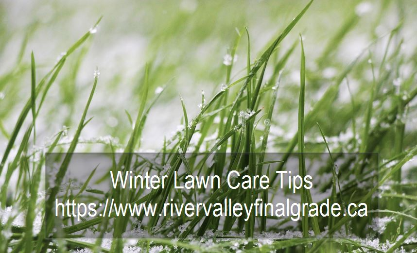 Edmonton Winter Lawn Care Tips